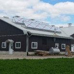 Free Sunshine Saves Money For Dairy Industry